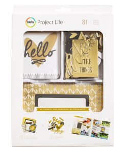 Paper-District-American-Crafts-Becky-Higgins-Project-Life-Cards-Project-LifeProject-Life-Value-Kit-Be-Fearless